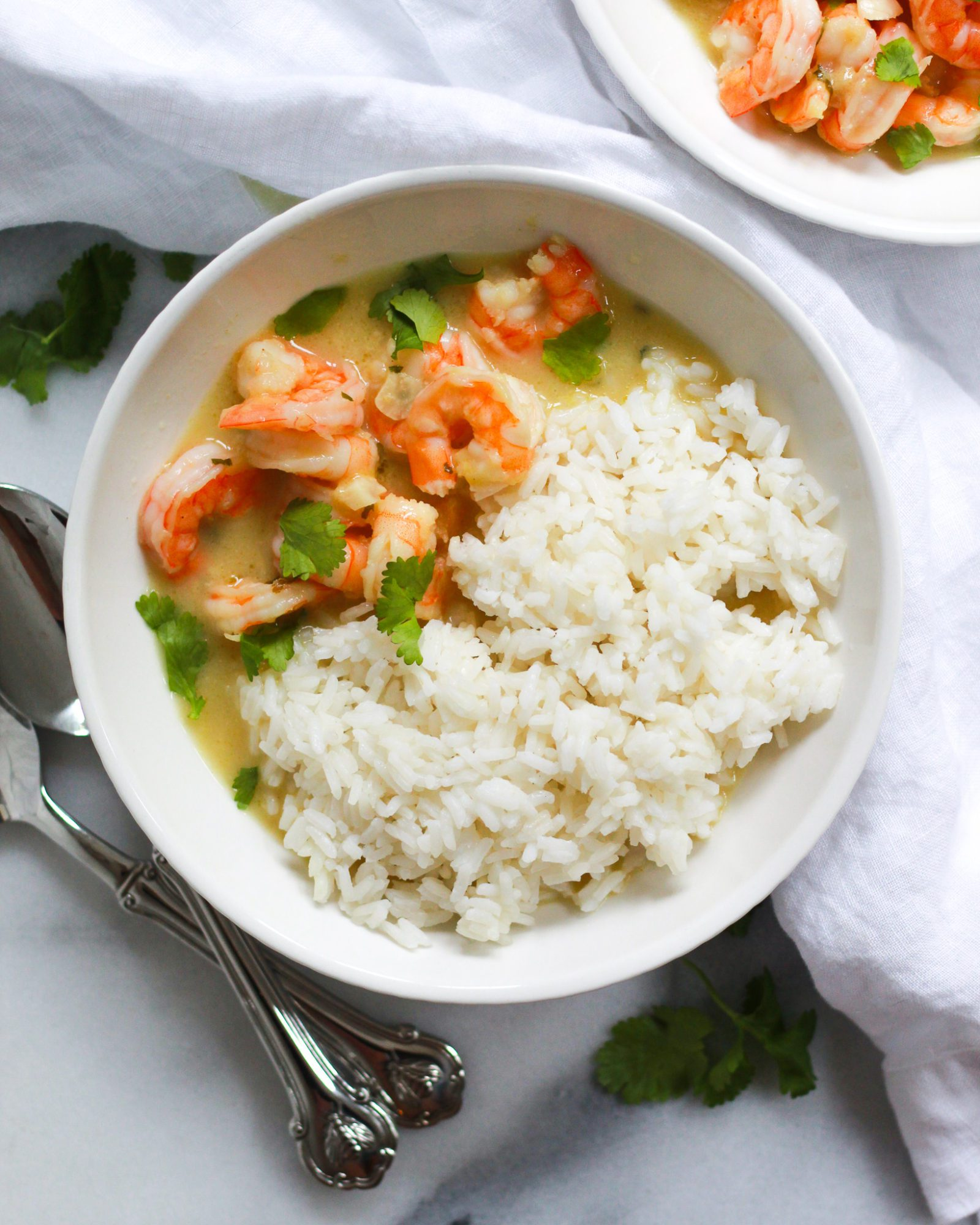 bowl of coconut curry shrimp with cilantro and rice