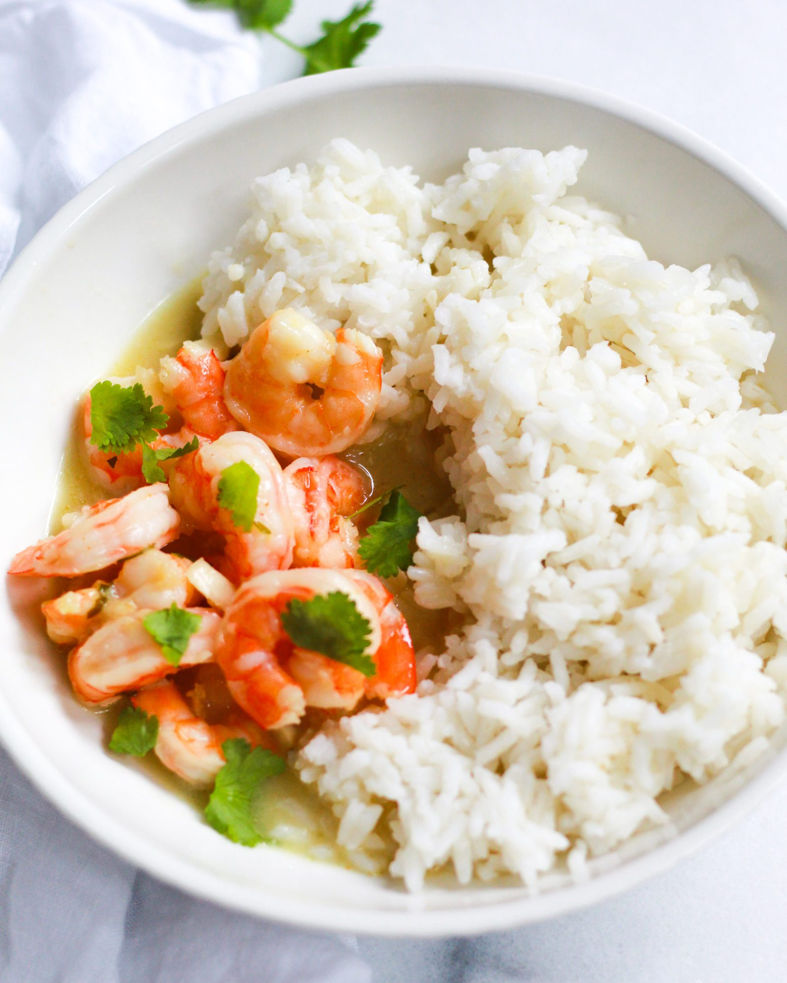 bowl of white rice and coconut curry shrimp