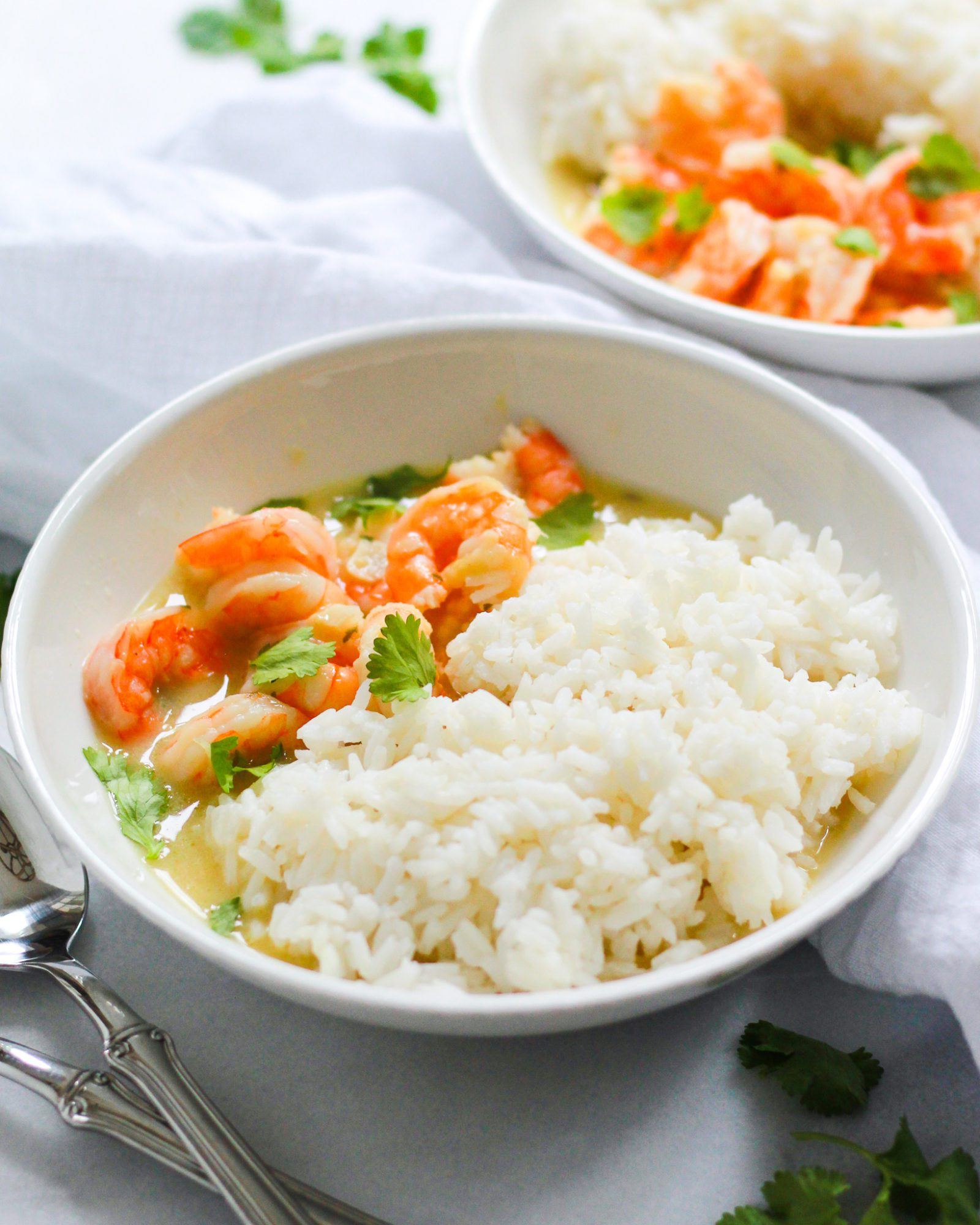 3/4 shot of shrimp with coconut milk sauce and rice