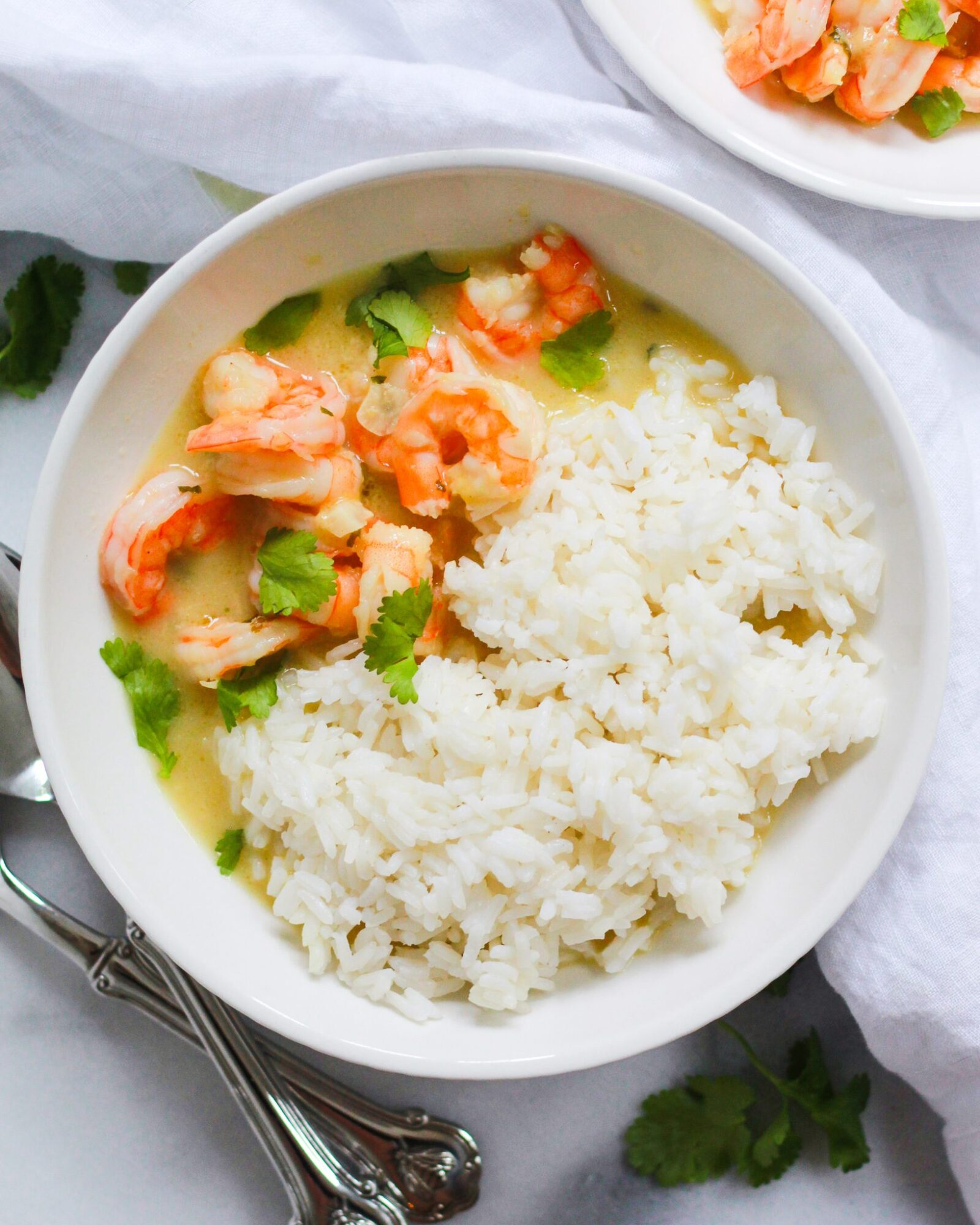 bowl of healthy thai coconut shrimp curry