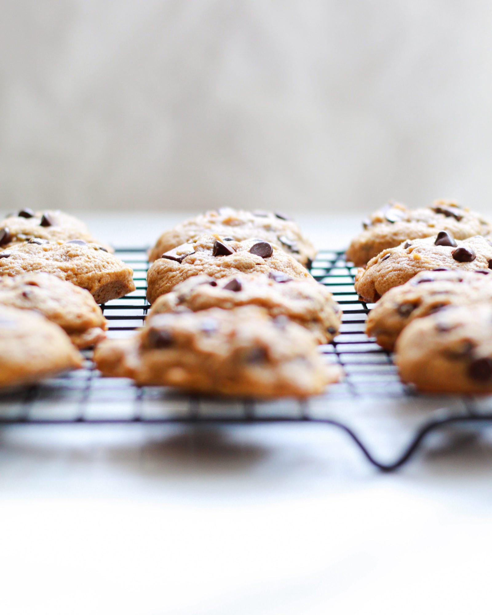 fresh baked vegan chocolate chip cookies on cooling rack
