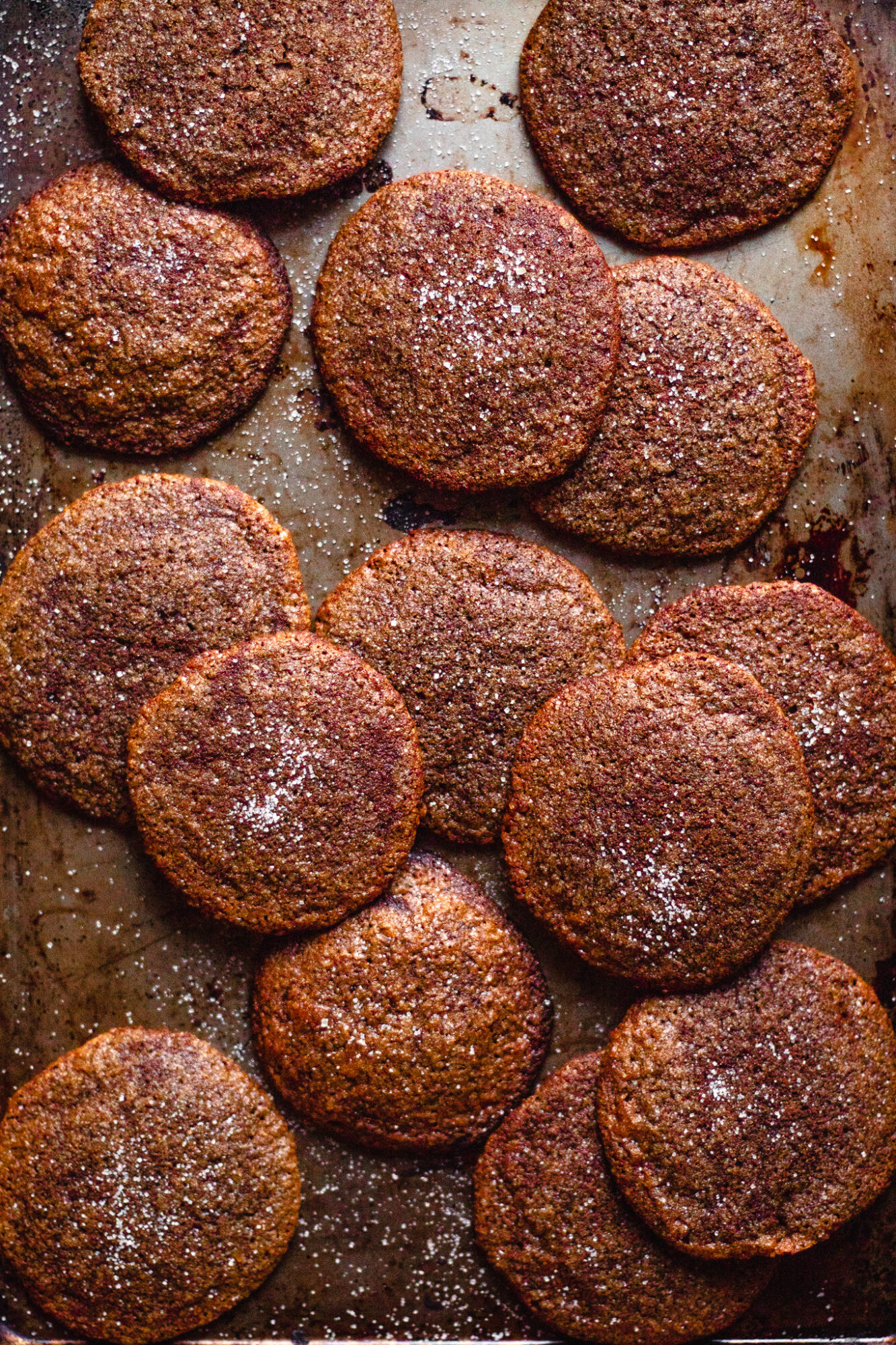 tray of chewy ginger molasses cookies