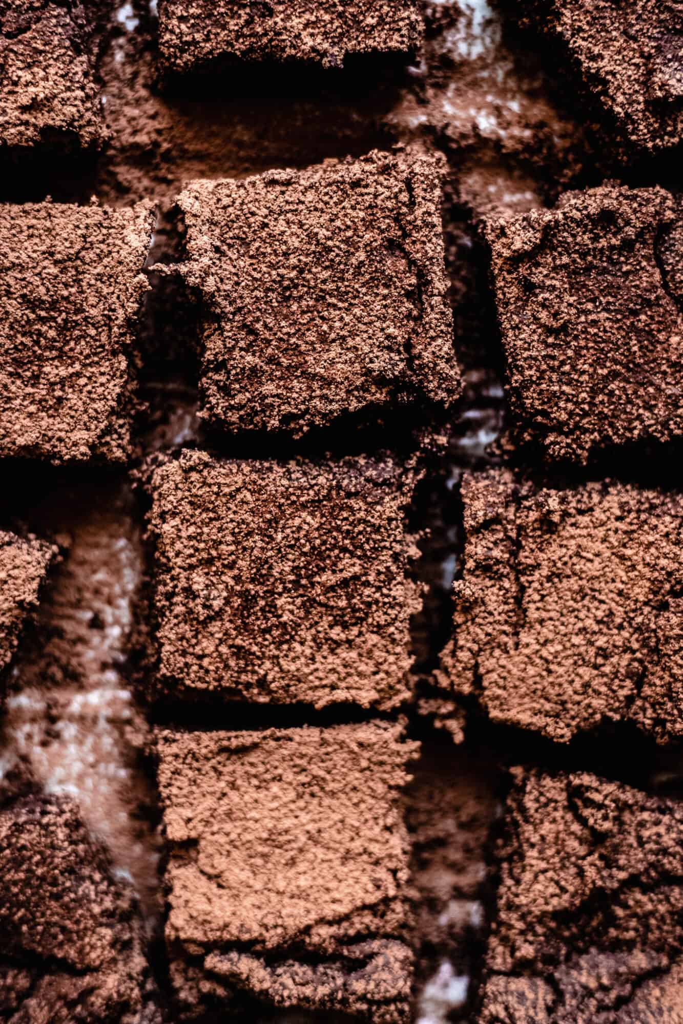 close up of sliced chickpea brownies