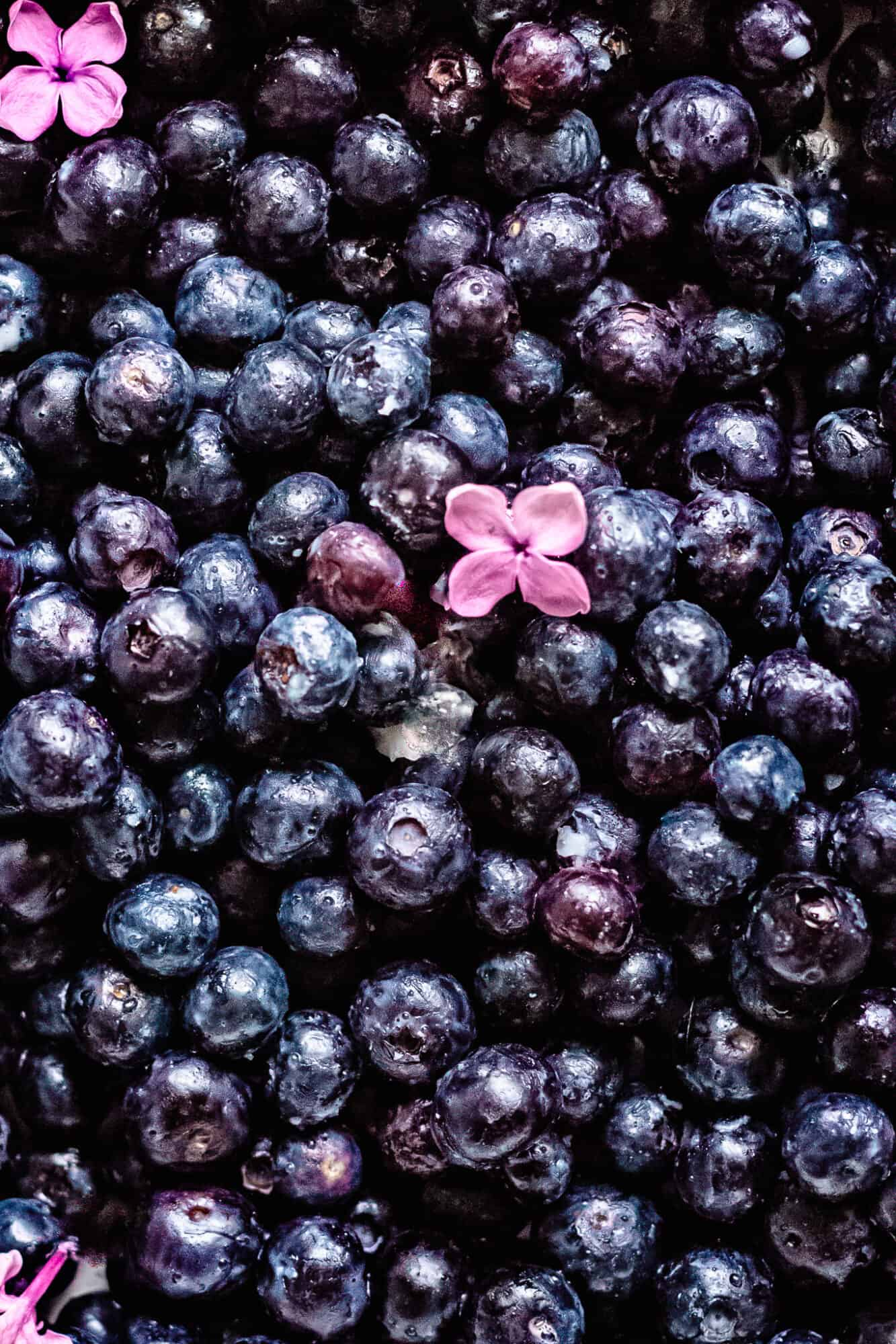 blueberries with lilacs